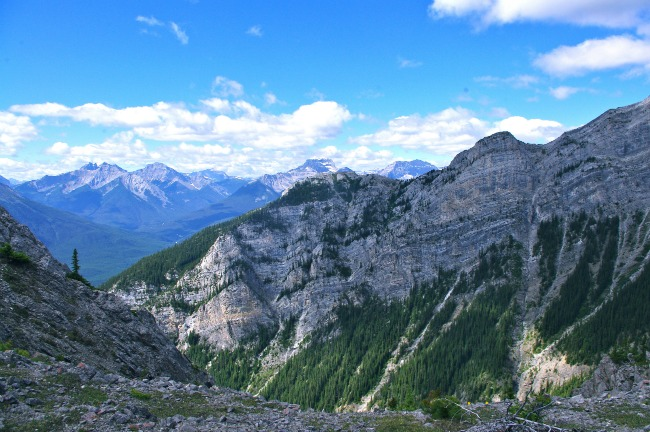 Mount Norquay Summit Ridge