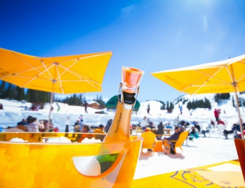 Sunshine and Champagne: Slush Cup at Sunshine Village