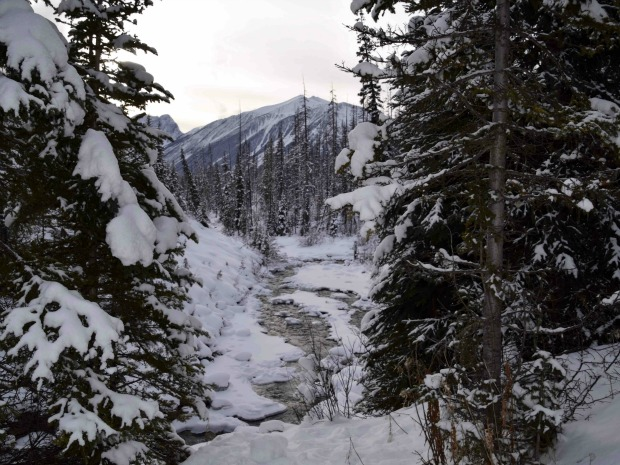 Perfect Day: Spa and Snowshoe near Banff