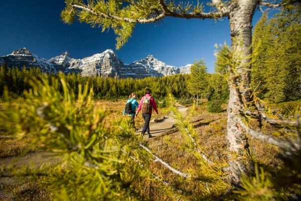 What you need to know before hiking Larch Valley