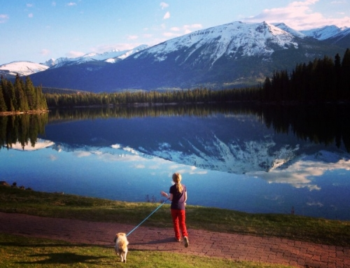 Looking for Jasper accommodations? My #1 is Fairmont Jasper Park Lodge