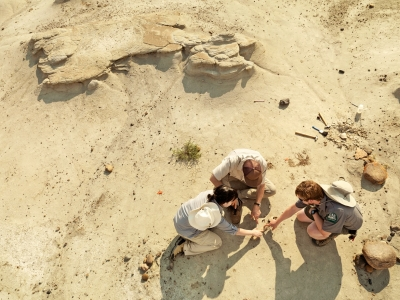 modern day fossil hunting