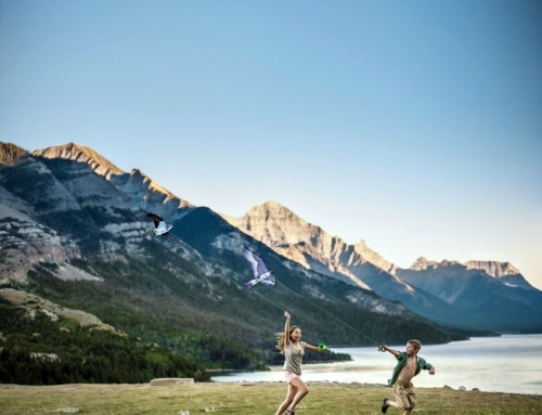 4 Fantastic things to do in Waterton