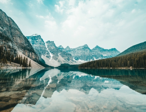 The best nature hashtags for all of your photos