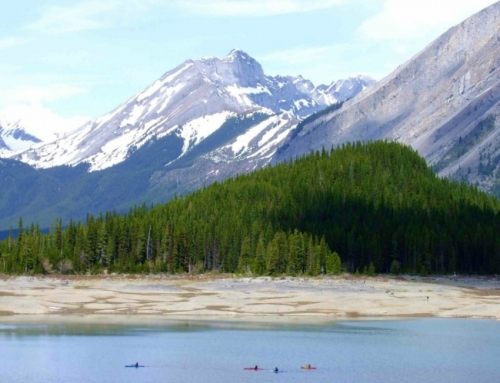 How to Have the Best Kayaking Experience in Calgary and Area