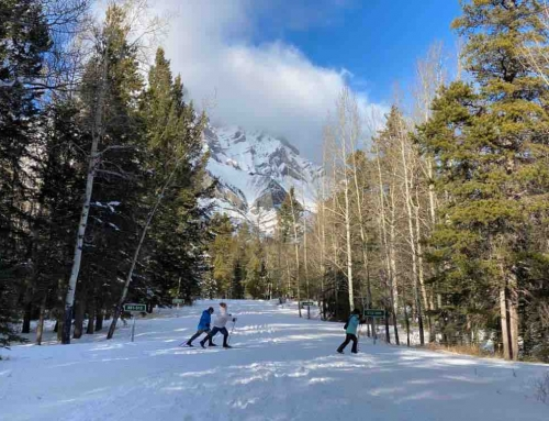 The best new trail for cross country skiing in Banff