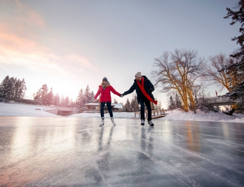 The Best Places for Calgary Public Skating