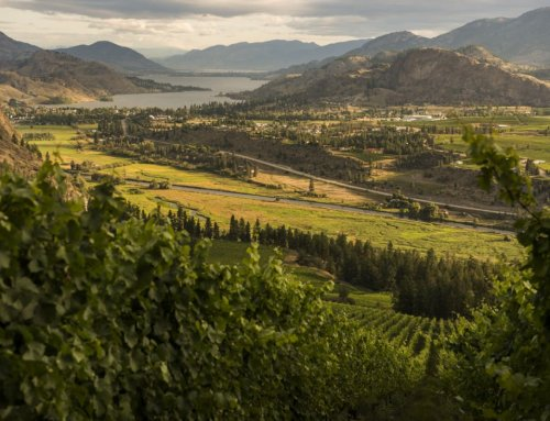 13 Penticton Wine Tours to Fill Your Cup This Summer