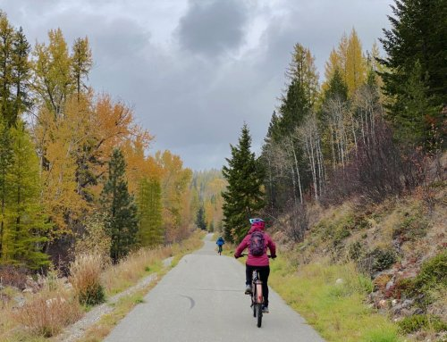 11 Amazing Things To Do In Cranbrook, BC